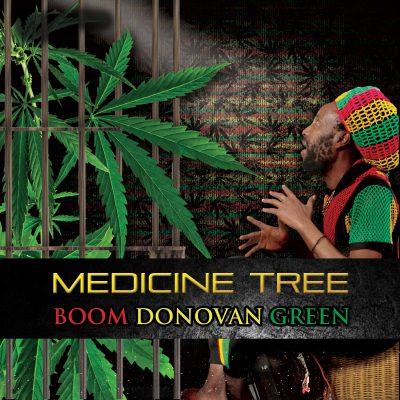 medicinetree_boomdonovan