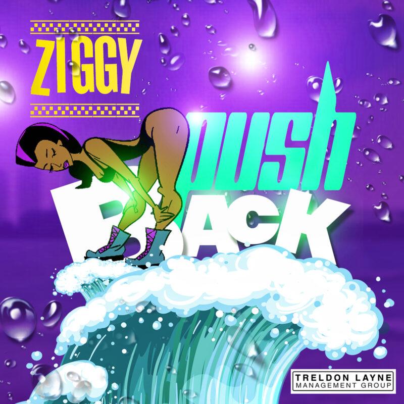 Ziggy - Push Back