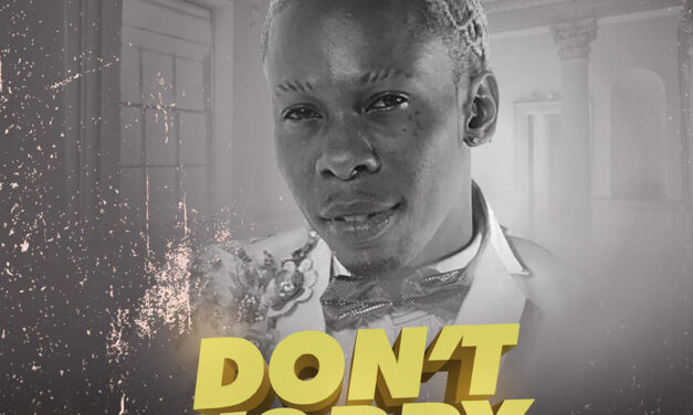 Pink Boss – Don't Worry