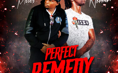 Mc Norman x Peter Miles – Perfect Remedy