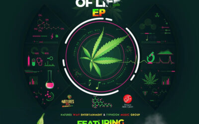 Various Artists – Tree Of Life