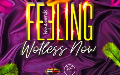 Hypasounds – Feeling Wotless Now